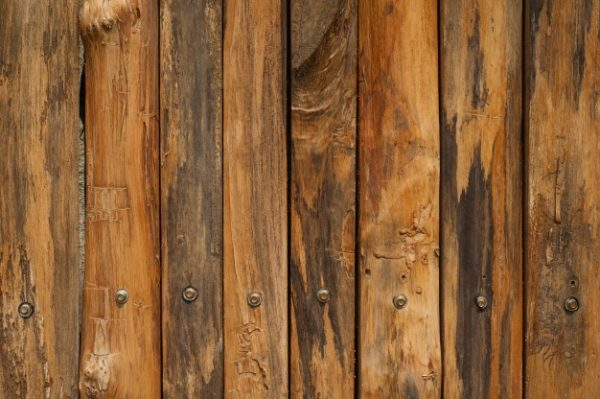 5818 wood-wall-for-text-and-background_1249-438